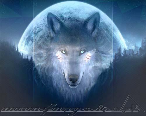 جملات فلسفی و زیبا درباره گرگ