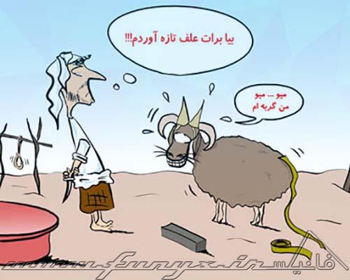 عکس های خنده دار عید قربان ۹۴